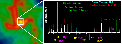 This illustration combines a view, obtained at radio wavelengths, of ionised gas at the centre of our Galaxy, the Milky Way (left panel), with a spectroscopic view of the very central region, taken with ESA's Herschel Space Observatory at far-infrared wavelengths (right panel). In this continuum-subtracted spectrum, the characteristic signatures of many chemical species can be seen.
